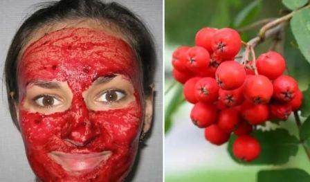 Полезные свойства рябины красной для женщин